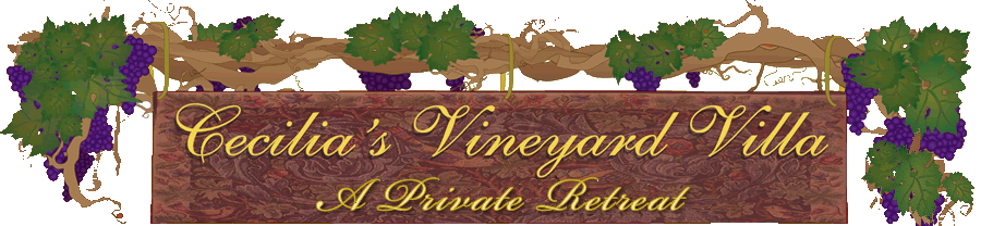 Cecilia's Vineyard Villa vacation rental